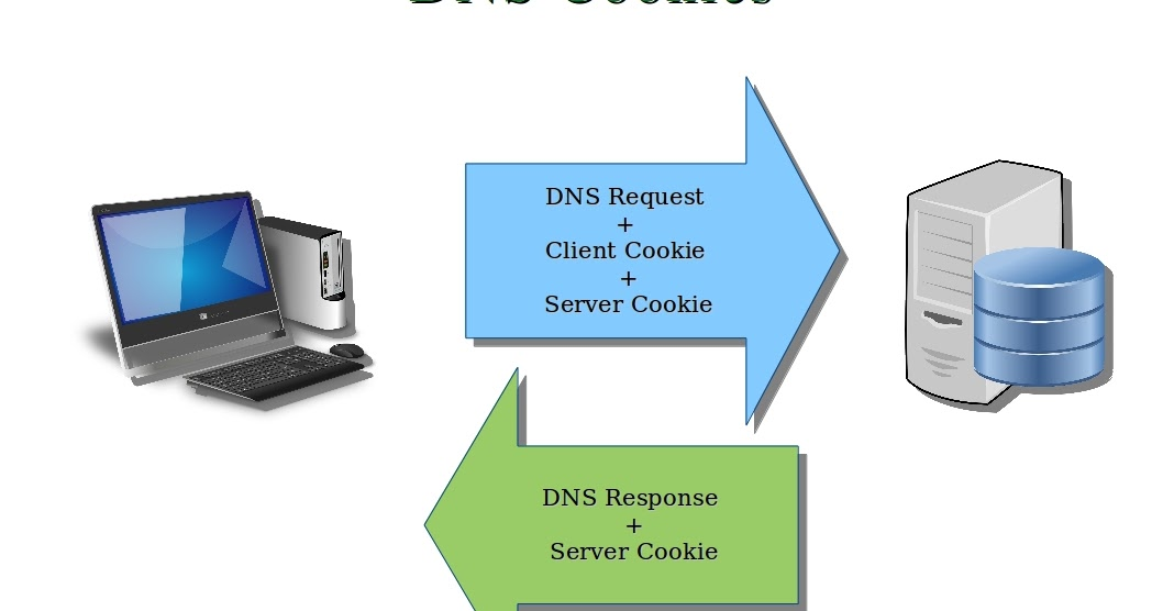 how to clear dns cookie