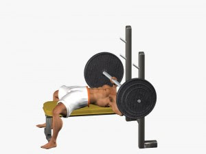 bodybuilding bench press