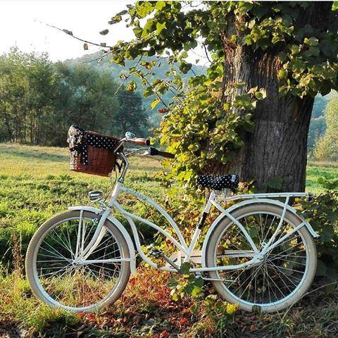 bc11108e9 FavoriteBike: Bici para mujer retro LILY