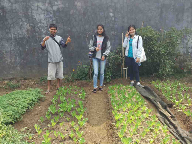 Mahasiswa agribisnis widya karya malang