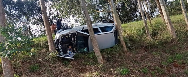 Manoel Ribas: Motorista perde controle ao desviar de cachorro e capota na PR-487