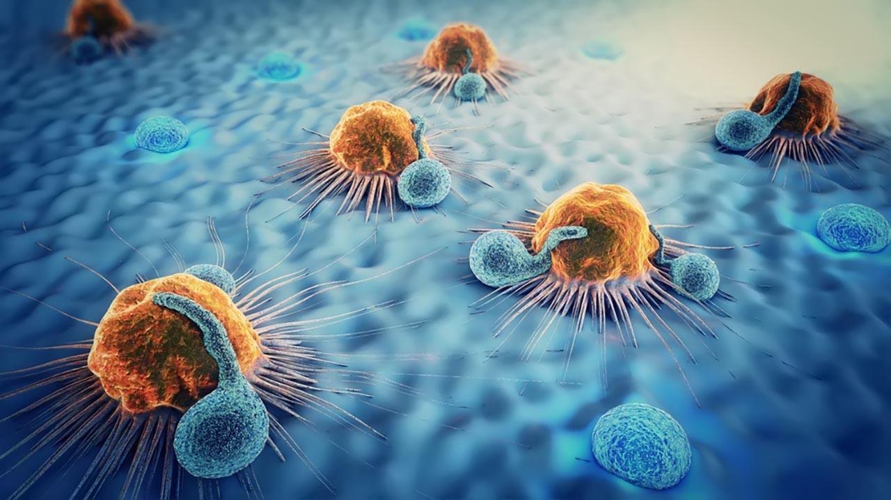 Các loại ung thư thường gặp nhất