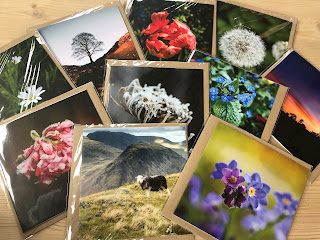 greetings cards, photography, cards in packs