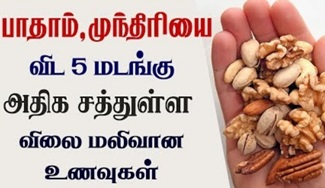 Top 5 Nuts with High Nutrients in Low Cost / lowest price nuts