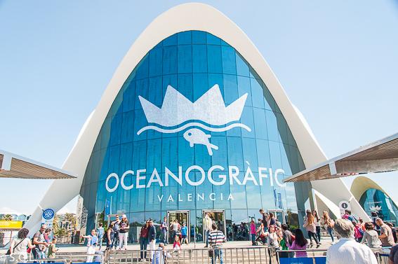 Oceanografic de Valencia. Resumen viajero 2016