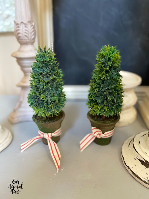 French topiaries clay pots red striped ribbon