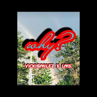 [Music]: VICKISMILEZ X LMX - WHY