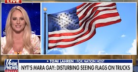 Fox News guest tells progressives to leave if they are offended by the American flag and what it stands for
