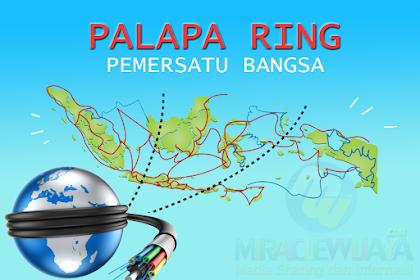 Apa itu Palapa Ring dan Peluang Ekonomi Digital Untuk Indonesia Maju