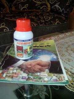 manfaat hormonik nasa