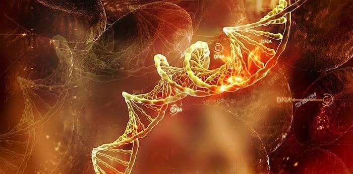 15 странных фактов о ДНК, которых вы точно не знали
