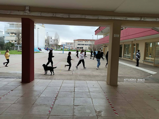 Αργολίδα: Δια ζώσης επαναλειτουργία για τα σχολεία της Δευτεροβάθμιας Εκπαίδευσης