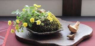 野の花キジムシロの山野草盆栽と一緒に飾った陶器のニワトリの親子の人形