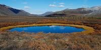 A pond created by melting permafrost in northern Yukon, Canada. (Image Credit:  Keith Williams via Flickr) Click to Enlarge.