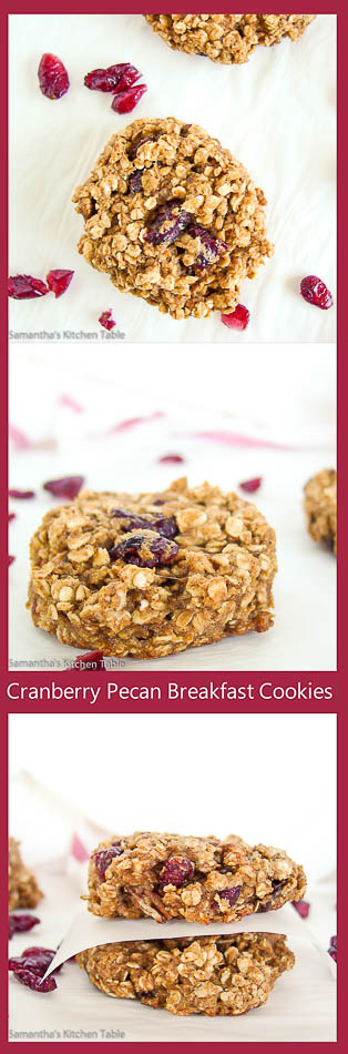 Cranberry Pecan Breakfast Cookies