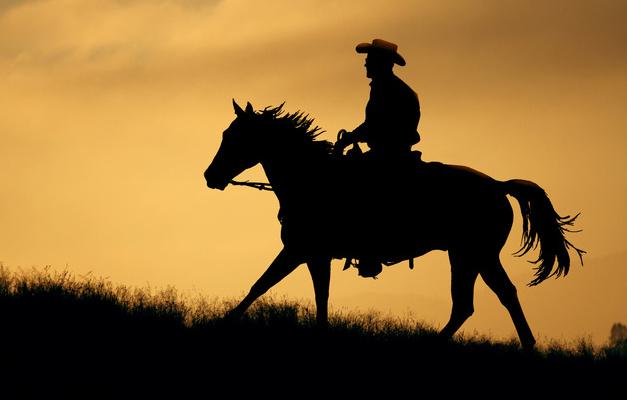 Hombre con caballo