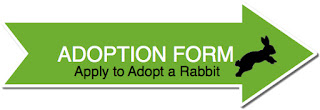 ADOPTION FORM