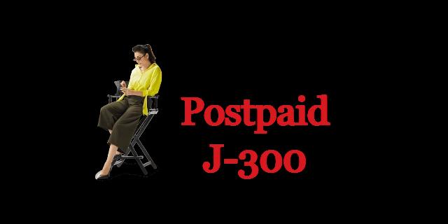 Jazz Postpaid J 300