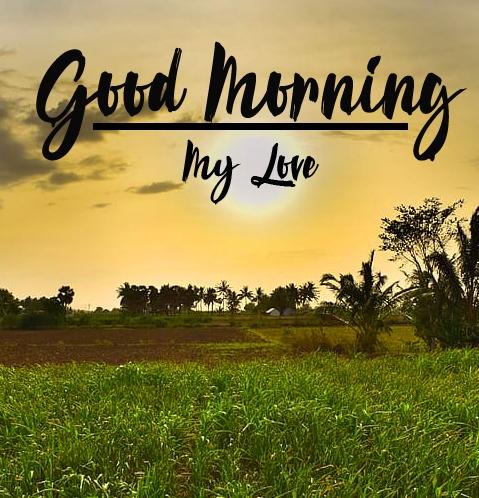 a beautiful good morning