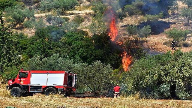 Πυρκαγιά στην περιοχή της Κάντιας στην Αργολίδα