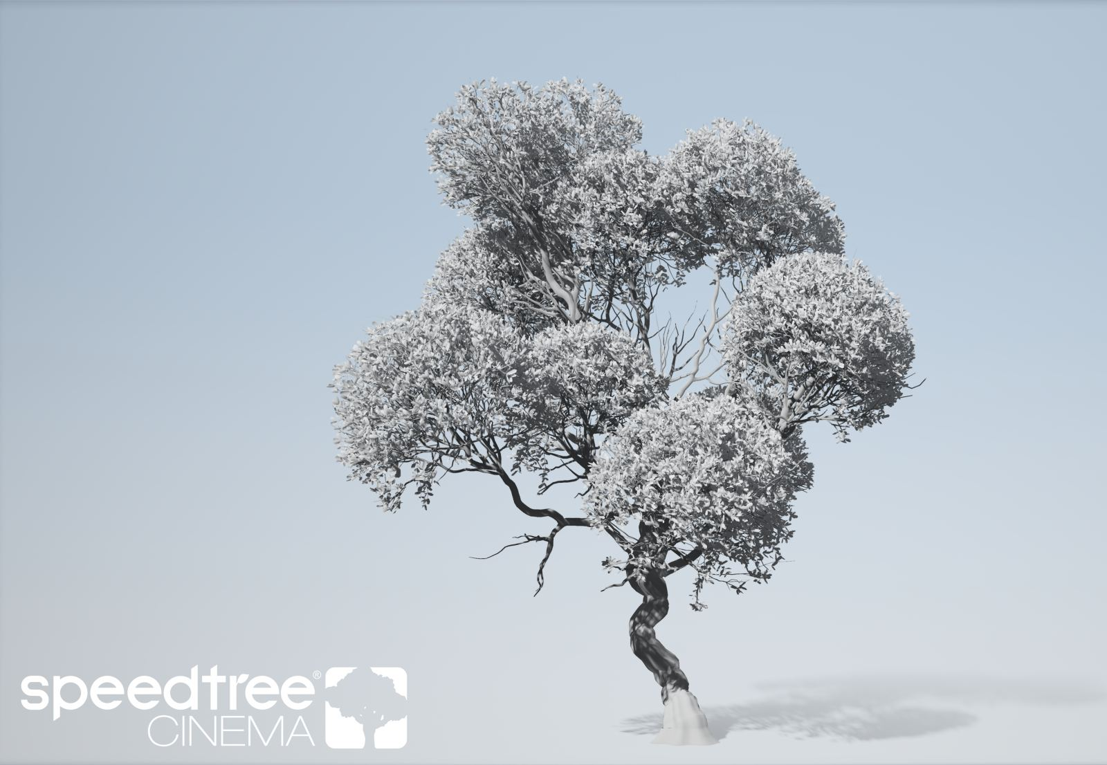 SpeedTree Cinema 8 Out Now | Computer Graphics Daily News