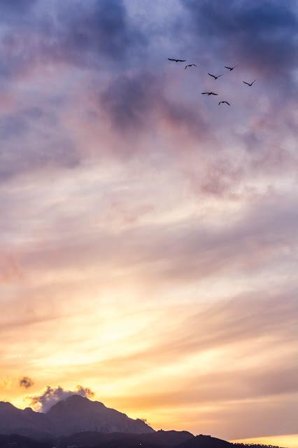 Hora dorada vs azul, foto de Carlos Larios