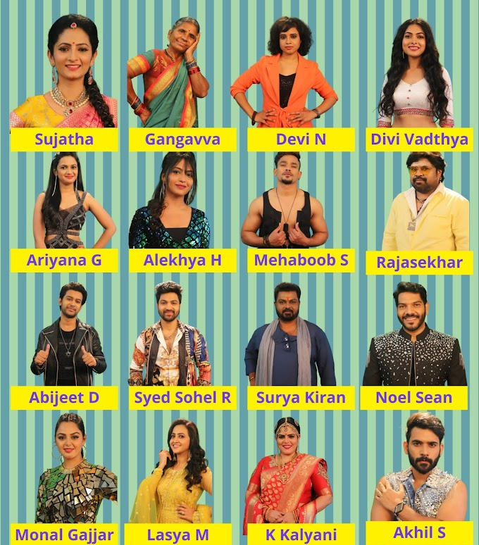 Telugu Bigg Boss 4 Contestants Name List with Photos 2020 Season - Nagarjuna