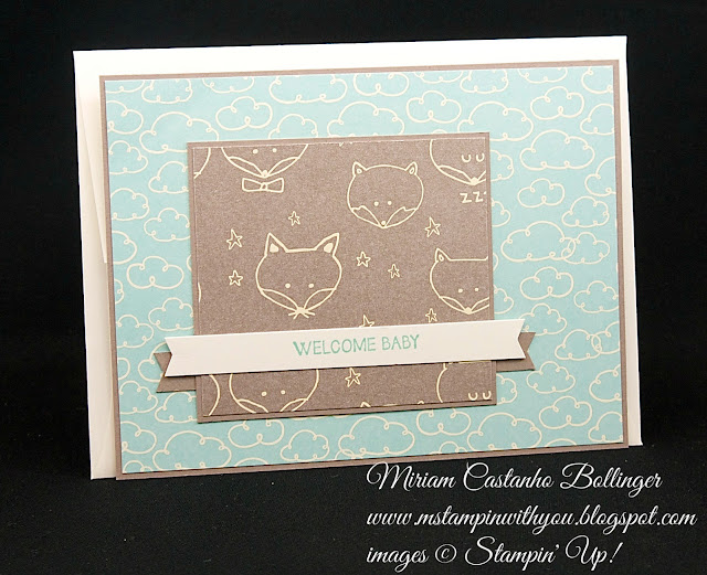 Miriam Castanho-Bollinger, #mstampinwithyou, stampin up, demonstrator, fms, baby card, sweet li'l things dsp, and many more stamp set, su