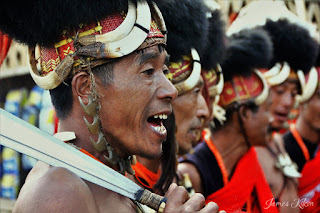 Khiamniungan Naga tribesmen perform traditional dance in costumes at Nagaland Hornbill Festival 2015 5
