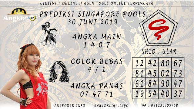 PREDIKSI SINGAPORE POOLS 30 JUNI 2019