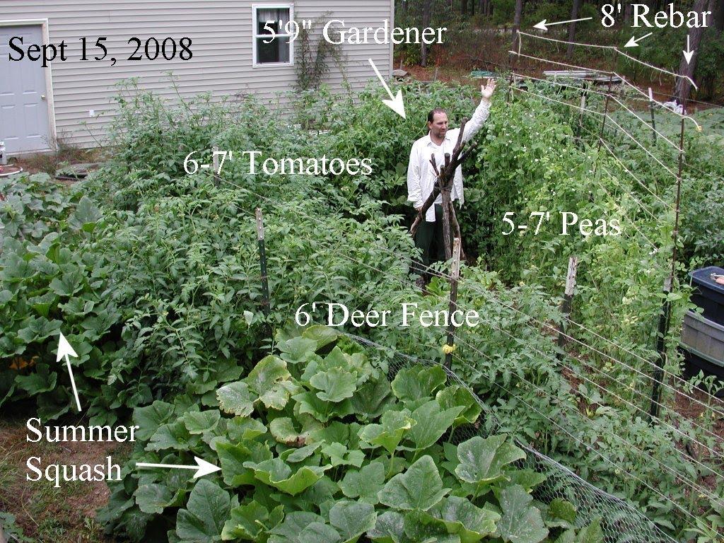 deep mulch gardening, infiltrating landscapes, Design ideen