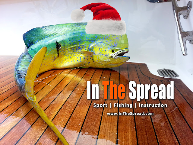 in the spread fishing videos christmas promotion