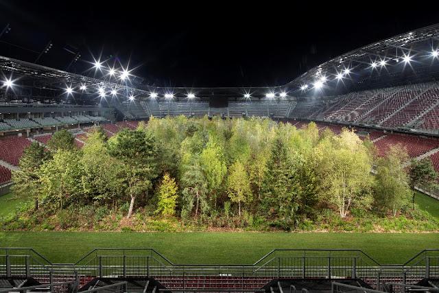 for forest klagenfurt