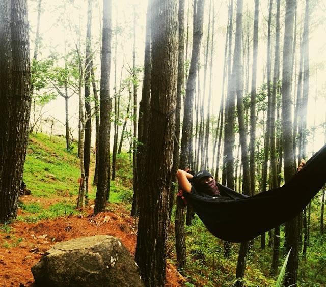 foto hammock di hutan pinus imogiri jogja