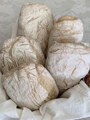 sourdough, bread, poolish, Ciabatta, yeast water