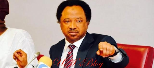 How Buhari And Tinubu Tried To Stop Me From Dumping APC - Shehu Sani Reveals