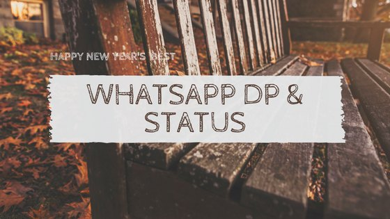 Whatsapp dp, whatsapp status new year 2017