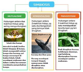 Pamflet SIMBIOSIS mutualisme komensalisme dan parasisitisme www.simplenews.me