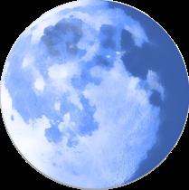 PaleMoon Mozilla Firefox 50.0.1 32-64 bit Multilingual Apps