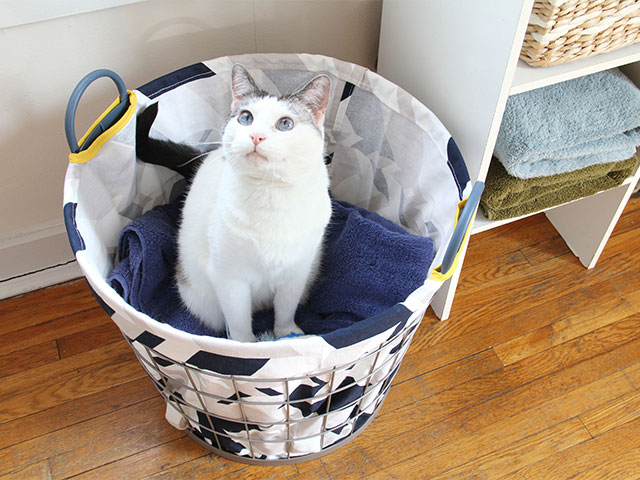Donut the kitty loves DIYs, like this hamper liner