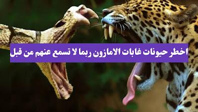 تعرف على اخطر الحيوانات التي تعيش في غابات الامازون