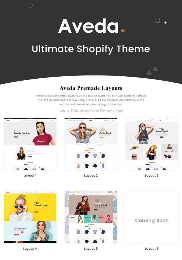 Best Sectioned Multipurpose Shopify Theme