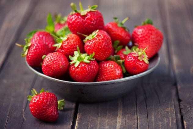 الفراولة Strawberry