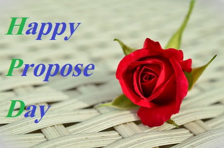 propose day gif