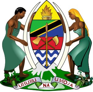 TAMISEMI: 550 Government Jobs Vacancies in Health Sector