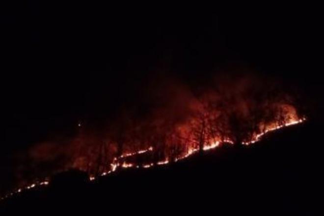 Kebakaran Lahan, Warga Lamuru Bone Panik