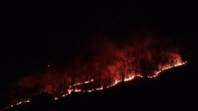 Kebakaran Lahan di Bone, Warga Khawatir Api Masuk ke Pepemukiman