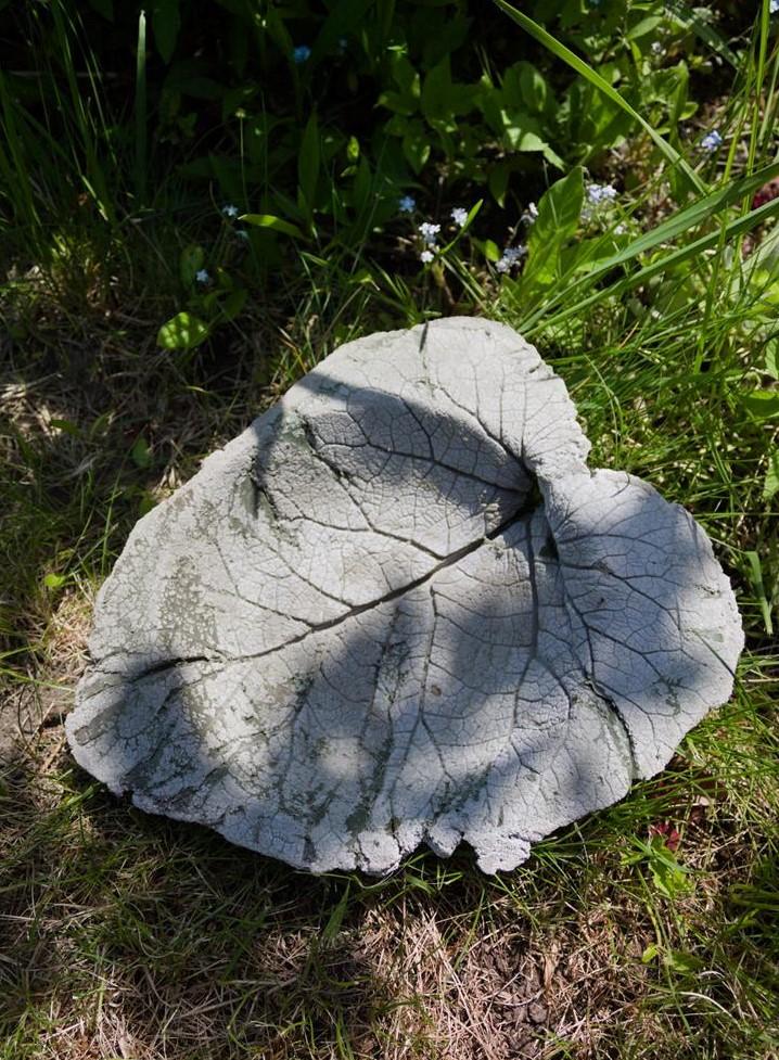 Roślinna misa z betonu