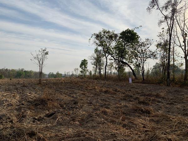 ขายที่ดิน ตำบลมาย อำเภอบ้านม่วง จังหวัดสกลนคร 14 ไร่ 2 งาน 83 ตรว
