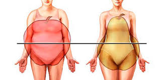 calculadora de grasa corporal formula